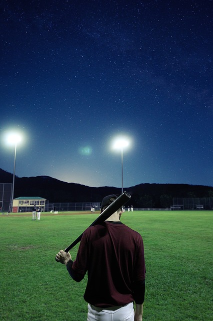 Baseball Terms {How well do You Know the Language of Baseball}